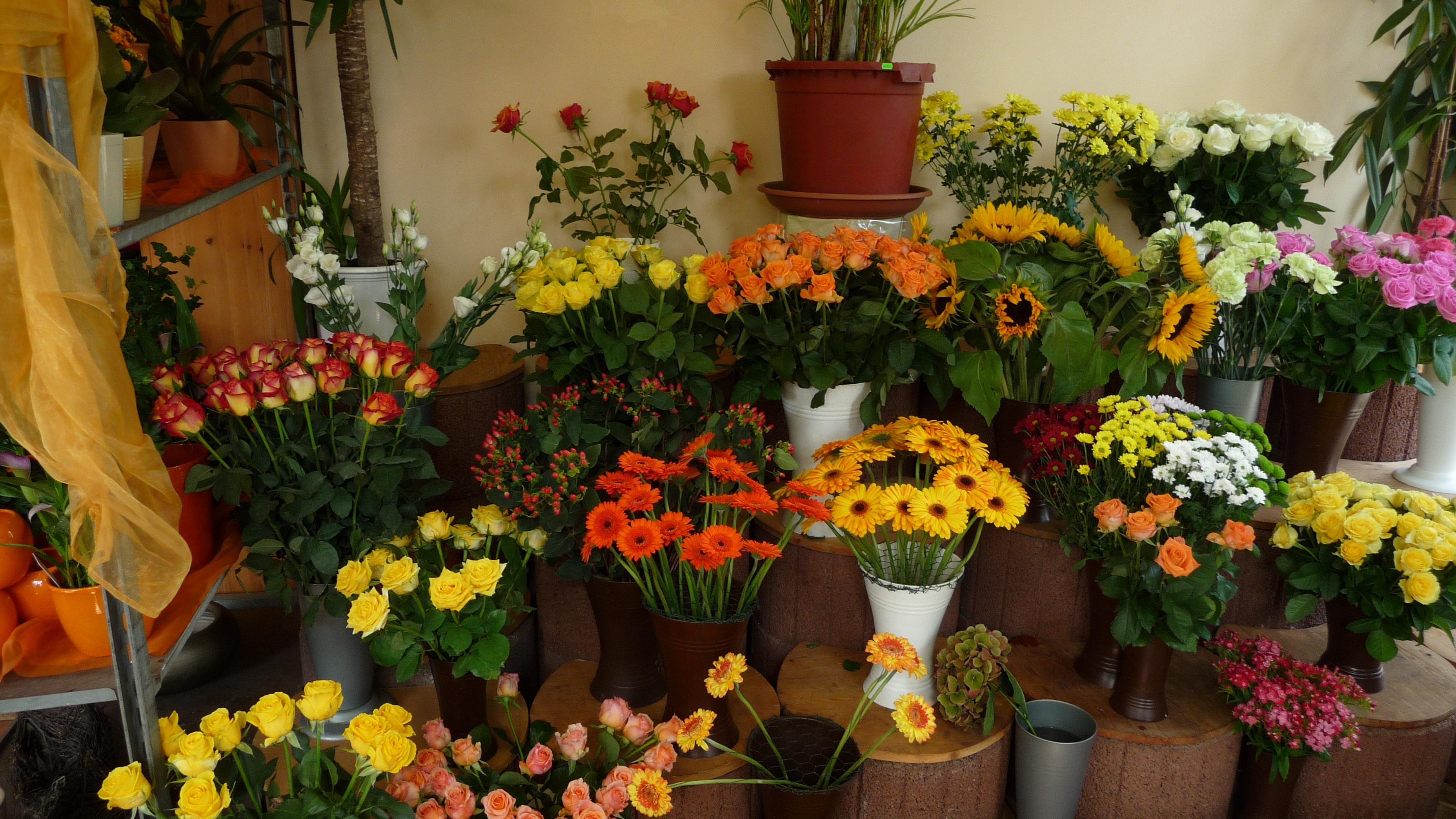 Membership Portland Flower Market